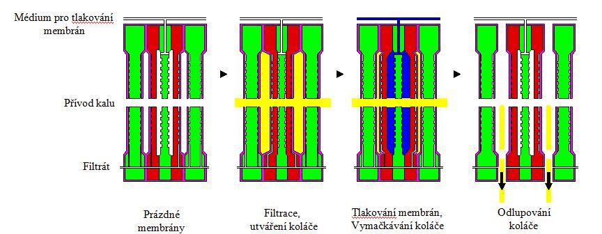 Membranové kalolisy